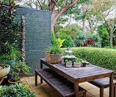 A Balinese holiday inspired the design of this lush and tropical garden in Sydney's Northern Beaches. The owners selection of tropical plants fit in perfectly to their coastal location, creating a holiday-like haven all year round. Tropical Garden Design, Tropical Landscaping, Backyard Landscaping, Tropical Plants, Tropical Gardens, Backyard Designs, Landscaping Design, Backyard Ideas, Cheap Beach Vacations