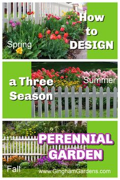 Designing with Perennials is a workbook/guide that teaches how to plan a perennial flower garden that blooms from spring through fall. Learn how to Design with Perennials for 3 Seasons of Bloom. Perennial flowers that bloom a long time. How to plan and plant a beautiful flower garden. Flower Garden Plans, Garden Design Plans, Flower Garden Design, List Of Flowers, Annual Flowers, Best Perennials, Flowers Perennials, Beautiful Flowers Garden, Amazing Flowers