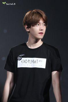 The EXO'luxion   BAEKHYUN 백현