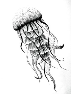 Jellyfish dotwork art design tattoo Jules Verne graphic