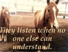 They listen when no one else can understand!
