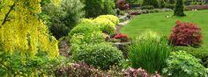 Realizované návrhy zahrad | Okrasna-zahrada.cz, návrhy a realizace zahrad Garden Inspiration, Plants, Gardening, France, Gardens, Garden Hedges, World, Garten, Flora