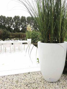 Bloempot / plantenbak Antigua Big hoogte 52 cm VTW De Antigua is een een prachtige grote pot. Verkrijgbaar in 2 maten en in het zwart of wit. Het gebruikte materiaal is Fiberstone (mengsel van polyester, gemalen graniet en fiberglas), dit maakt de pot supersterk en niet zwaar, maar zorgt wel voor een natuurlijke uitstraling. De schitterende glanslaag ontstaat door bewerking met meerdere lagen verf. Deze glanslaag geeft de potten een zeer exclusieve en trendy uitstraling. Lichtgewicht en...