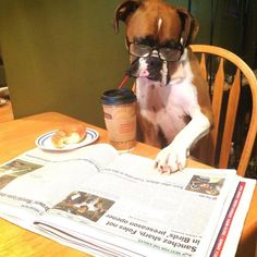 Mornin' Getting caught up on the news with my breakfast.