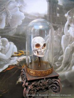 Skull under glass dome.