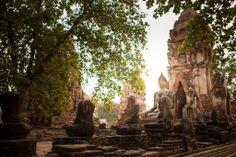 Wat Maha That in Ayuttaya Province, Thailand