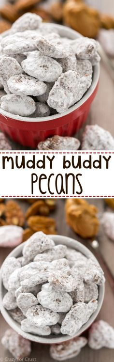 Muddy Buddy Pecans Muddy Buddy Pecans are an easy recipe that's perfect for parties, holidays, or parties! Chocolate and peanut butter covered pecans, doused in powdered sugar! Pecan Recipes, Candy Recipes, Holiday Recipes, Dessert Recipes, Snack Recipes, Holiday Desserts, Thanksgiving Desserts, Salad Recipes, Just Desserts