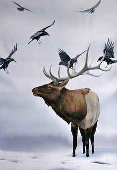 """Elk with Ravens"" original watercolor by Turi MacCombie 60 x 40"" 