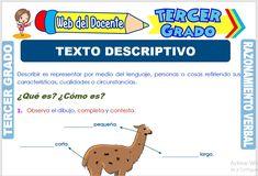 Ficha de Texto Descriptivo para Tercer Grado de Primaria Text Types, Third Grade