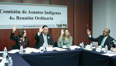 Creo en y busco un mejor futuro para los pueblos indígenas: Jorge Toledo