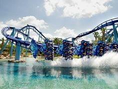 Rollercoasters are so much faster in orlando- Amo went on manta first, then barely went on any coasters after!! Traumatised I suppose!!