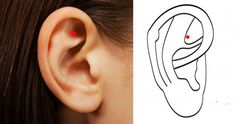 "Here's What Happens if You Massage This Point On The Ear   ""The Gate of Heaven""."