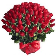 An exclusive bunch of 100 red roses with seasonal fillers wrapped in cellophane and bow. This combo would surely bring smile on his/her face which displays your true and ardent feelings.http://livinggifts.co.in/100-roses-kiss