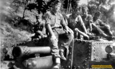 Defence Force, Armored Vehicles, Hungary, Ww2, Tanks, Armour, German, History, Military Photos
