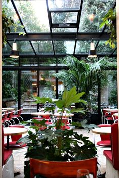 Hotel Amour Such a lovely place to have breakfast - Next time we go I will try not to be so hung over !!
