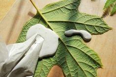 Leaf Casting with Plaster of Paris