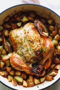 Whole roasted chicken with potatoes in a Dutch oven. Easy to make with a crispy … Whole roasted chicken with potatoes in a Dutch oven. Easy to make with a crispy golden skin. Perfect for a cozy family dinner or celebration. Dutch Oven Whole Chicken, Whole Chicken Recipes Oven, Oven Roasted Whole Chicken, Roasted Chicken And Potatoes, Cooking Whole Chicken, Roast Chicken Recipes, Roasting Chicken In Oven, Crispy Chicken, Easy Dutch Oven Recipes