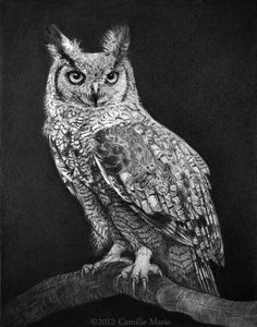 Great Horned Owl by Camille-Marie.deviantart.com on @deviantART..... can't imagine this is actually a pencil drawing !!!