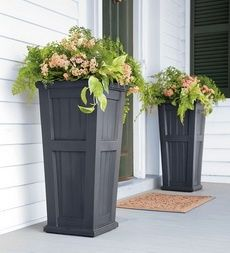 I think these planters could be a more affordable alternative to ceramic planters on either side of the front door. -KW