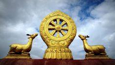 Establish in Your Dharma (Religion). William Blake, Dharma Wheel, Buddhist Philosophy, Om Shanti Om, Gautama Buddha, Les Religions, Spiritual Development, Spiritual Awakening, Psicologia