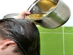 Milagroso remédio que combate a queda de cabelo e estimula o crescimento rapidamente!! - Receitas e Dicas