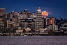 Ciudad, Estados Unidos, Seattle, noche, Casa Luna wallpaper