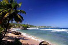 Bathsheba on the east coast of Barbados © Digishooter - Fotolia.com  Barbados Vacaciones  Zougank Eis Blog méi vill Informatioun   https://storelatina.com/barbados/travelling  #बार्बाडोस #ברבדוס #巴巴多斯 #باربڊوس  Barbados Vacaciones  Zugriff auf die Website für Informationen   https://storelatina.com/barbados/travelling