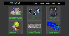 this website allow students to  explore, study, and play about cells, microbes and the immune system