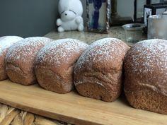 Chocolate cranberry bun  #cranberry #chocolatechips #cocoa  #wildyeast #natuallyleavened #sourdough #bread #buns