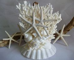 Unique Large Coral Beach Theme Wedding Cake Topper, 1 of a Kind Cake Topper, Coral Shell & Starfish Wedding Decor, Coral Table Centerpiece by SeashellBeachDesigns on Etsy