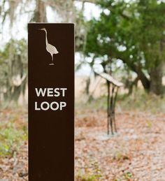 College of Charleston Trail Signage Zoo Signage, Wooden Signage, Outdoor Signage, Wayfinding Signage, Signage Design, Environmental Graphic Design, Environmental Graphics, Trail Signs, Exterior Signage