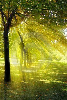 47 Ideas De Rayos De Sol Rayos De Sol Sol Paisajes
