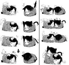 nyan cats warm sleep cute anime
