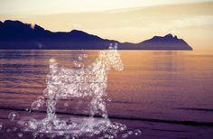 Nieuw in mijn Werk aan de Muur shop: Een paard van waterdruppels