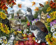 Lori Schory/Autumn Kitties