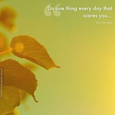 Do one thing every day that scares you... Quote author: Baz Luhrmann. Photo by D. Sharon Pruitt. (A poster from Life is Beautiful app - available on iTunes.)