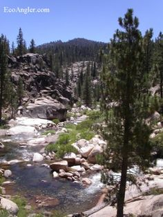 Kern river info please!?