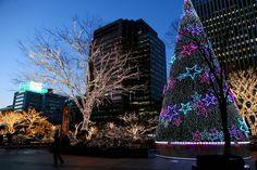 Merry Christmas in Myeongdong  #myeongdong #seoul #southkorea #euljiro #winter #christmas #newyear
