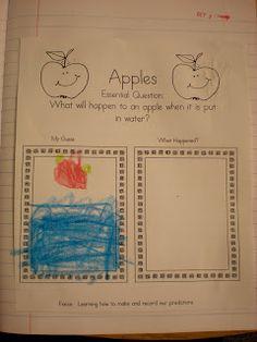 Growing Kinders: Apple-Licious!