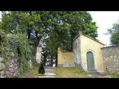 De La Motte kastélypark. /De La Motte Castle Garden/ - YouTube Trunks, Youtube, Plants, Drift Wood, Tree Trunks, Plant, Youtubers, Youtube Movies, Planets