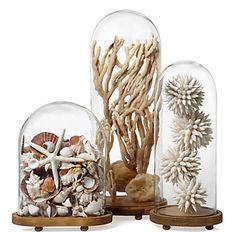 Home-Styling: TREND ALERT- Glass bell jars * ALERTA TENDÊNCIA - Campanulas de Vidro