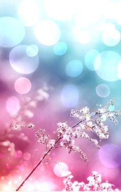 Blue, Purple, Pink Bokeh