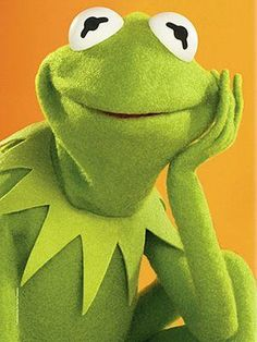 Remember the Muppet Show!  AND Sesame Street... what a popular guy that Kermit was.