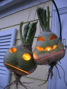 Is it me, or do turnip jack o'lanterns look way more frightening than pumpkin jack o'lanterns? They're like shrunken head jack-o-lanterns. How did something like this never occur to me before? Irish Halloween, Halloween Facts, Samhain Halloween, Holidays Halloween, Vintage Halloween, Halloween Pumpkins, Halloween Diy, Halloween Decorations, Halloween Stuff