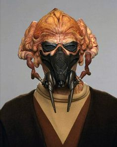 Plo Koon was a Kel Dor male from the planet Dorin who became a Jedi Master and a lifetime member of the Jedi High Council, holding the position from after the Stark Hyperspace War to the end of the Galactic Republic