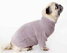 Frill Dog Sweater by Zia and Tia Animal Sweater, Knit Dog Sweater, Dog Sweaters, Pet Coats, Funny Animals, Cute Animals, Hand Knitting, Knitting Patterns, Crochet Patterns