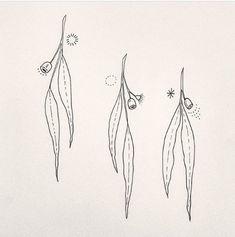 Baby Tattoos, Flower Tattoos, Leaf Tattoos, Sleeve Tattoos, Tasteful Tattoos, Cute Tiny Tattoos, Botanical Illustration Black And White, Australia Tattoo, Black Line Tattoo