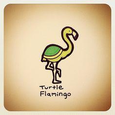 Turtle Flamingo | Turtle Wayne | Flickr