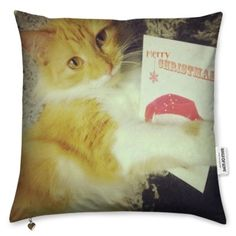 Bags of Love Design a Christmas Cushion - entry by Barbara Statham