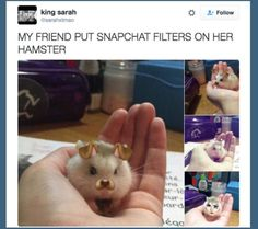 The 19 Cutest Things To Ever Happen